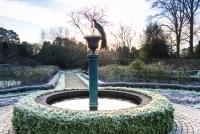 The fountain in the rose garden