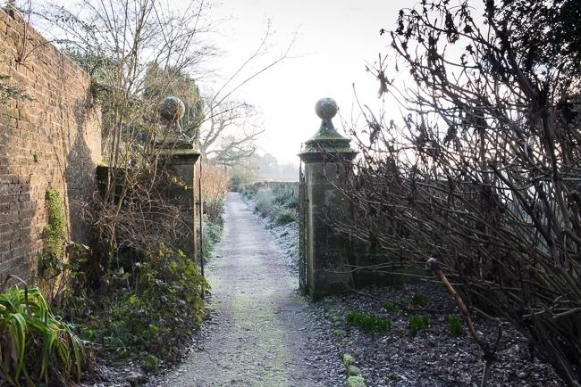 Long border 'Paradise Walk',  in winter