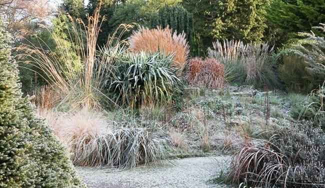 The grassy knoll at Borde Hill garden