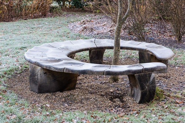 Bench seat around the base of a young tree