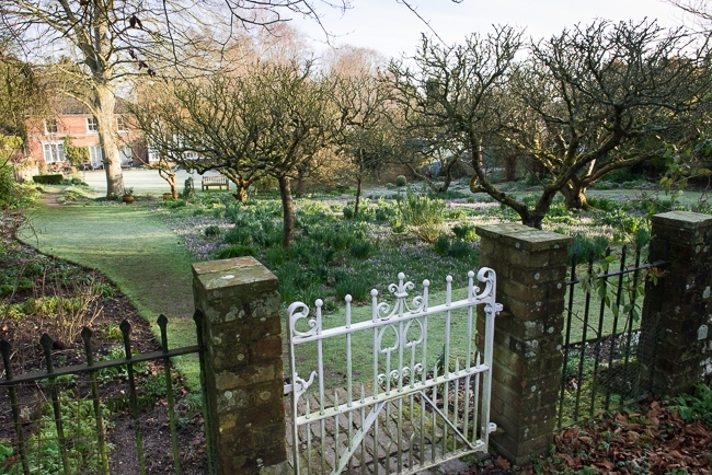 Gate from the wild garden looking towards the orchard and house